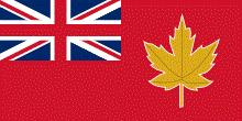 bandera propuesta por el Comité en 1946