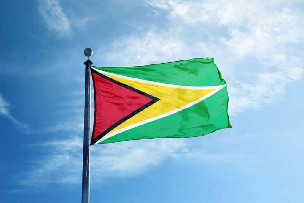 bandera actual de guyana