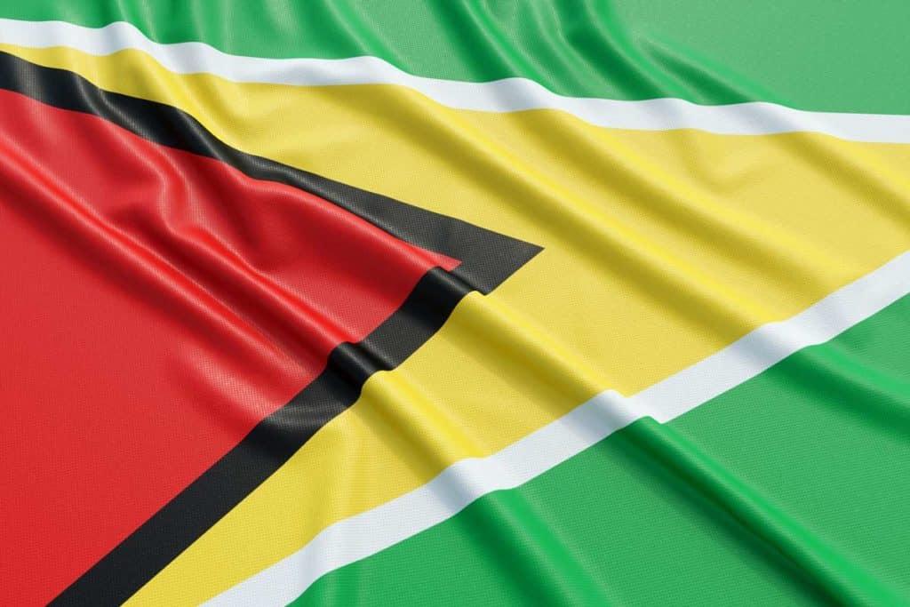 imagen bandera de guyana