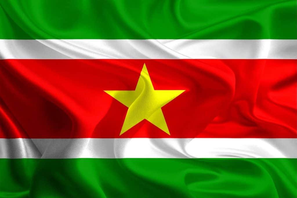 imagen bandera surinam